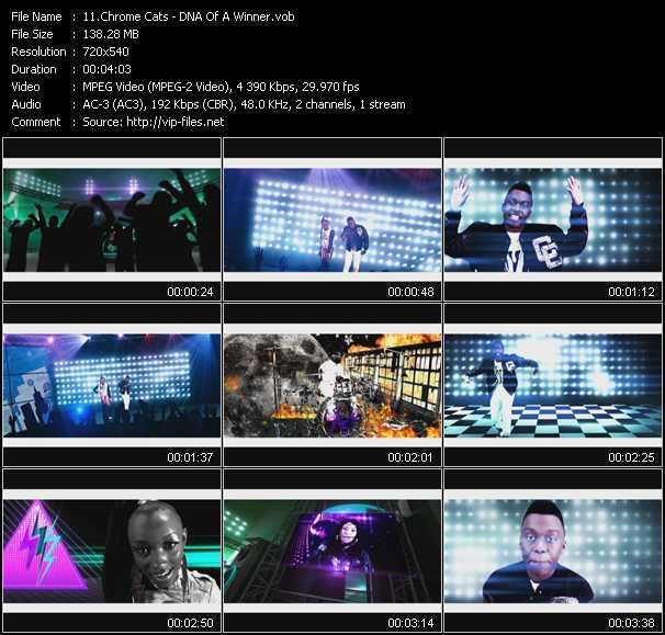 Chrome Cats video screenshot