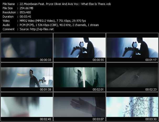 Moonbeam Feat. Pryce Oliver And Avis Vox video screenshot