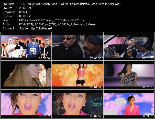 N-Trigue Feat. Snoop Dogg video screenshot